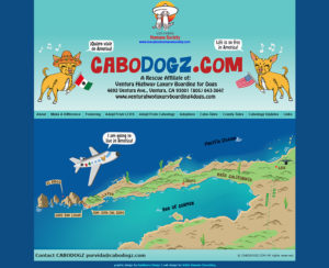 CaboDogz custom designed hand-coded website