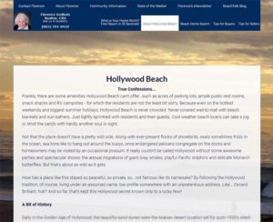 hollywoodbeachhomes.com, custom designed WordPress website, maintenance & hosting
