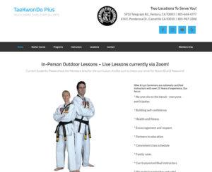 tkd-plus.com, custom designed WordPress website